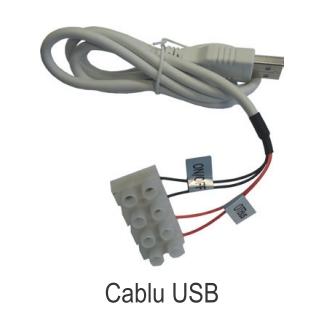 Termostat ambiental cu radiofrecventa RF si WiFi FERROLI CONNECT - cablu USB